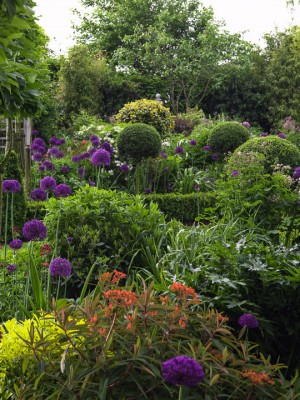 wpid8718-Topiary-For-All-Seasons-GLIN103-nicola-stocken.jpg
