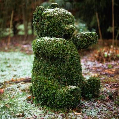 wpid8720-Topiary-For-All-Seasons-GLOW013-nicola-stocken.jpg