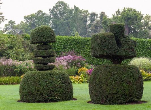 wpid8724-Topiary-For-All-Seasons-GLWA020-nicola-stocken.jpg