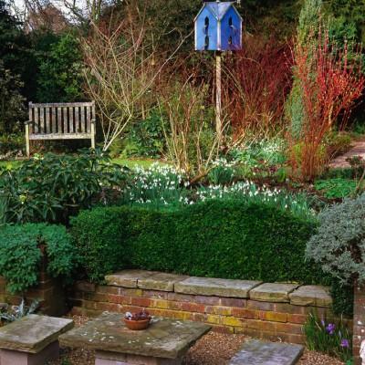 wpid8726-Topiary-For-All-Seasons-GMIT013-nicola-stocken.jpg