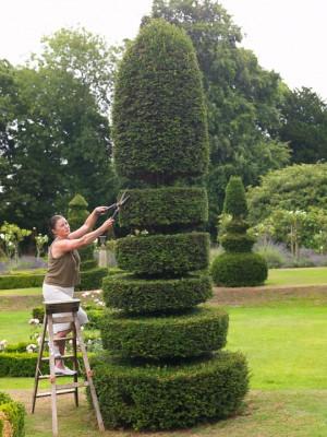 wpid8728-Topiary-For-All-Seasons-GOLR001-nicola-stocken.jpg