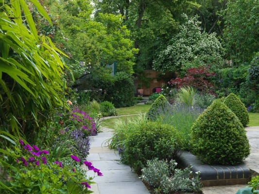 wpid8736-Topiary-For-All-Seasons-GROB010-nicola-stocken.jpg