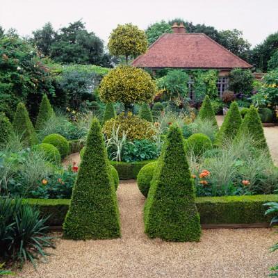 wpid8740-Topiary-For-All-Seasons-GRUS031-nicola-stocken.jpg