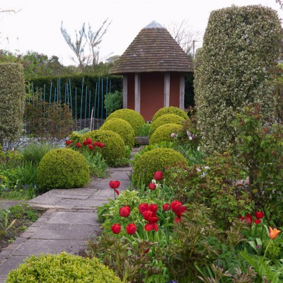 wpid8746-Topiary-For-All-Seasons-GSAN013-nicola-stocken.jpg