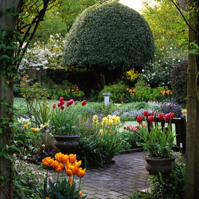 wpid8752-Topiary-For-All-Seasons-GSPR070-nicola-stocken.jpg