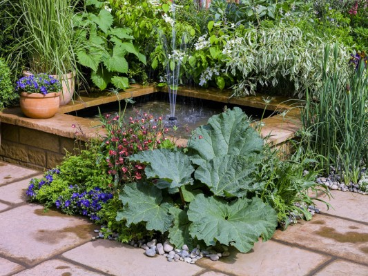 wpid8776-Childrens-Gardens-DESI110-nicola-stocken.jpg