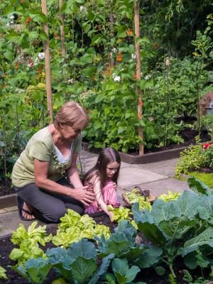 wpid8792-Childrens-Gardens-GBYF037-nicola-stocken.jpg