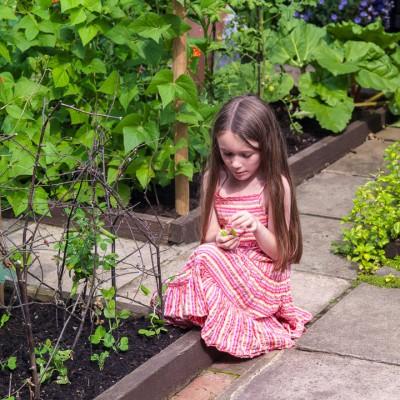wpid8794-Childrens-Gardens-GBYF040-nicola-stocken.jpg