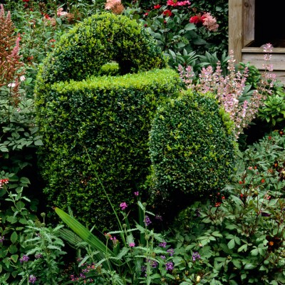 wpid8834-Childrens-Gardens-GRUS007-nicola-stocken.jpg