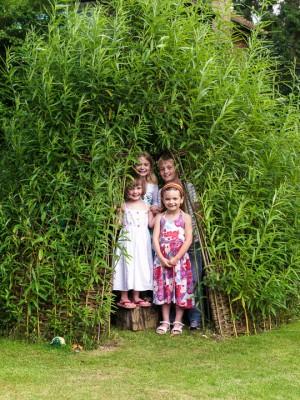 wpid8842-Childrens-Gardens-GWLL002-nicola-stocken.jpg
