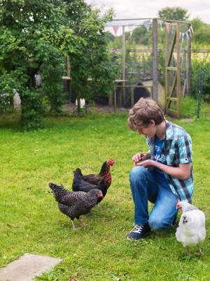 wpid8846-Childrens-Gardens-GWOM003-nicola-stocken.jpg