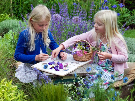 wpid8854-Childrens-Gardens-QCRA009-nicola-stocken.jpg