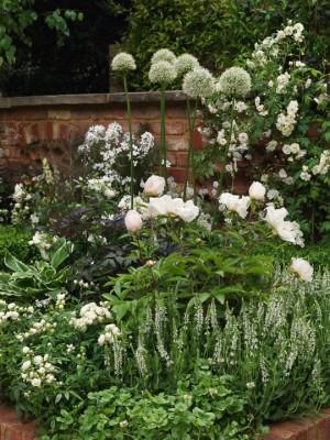 wpid8879-Colour-in-the-Garden-DESI264-nicola-stocken.jpg