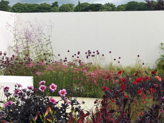 wpid8881-Colour-in-the-Garden-DESI375-nicola-stocken.jpg