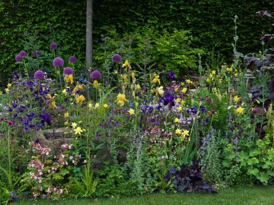 wpid8887-Colour-in-the-Garden-DESI451-nicola-stocken.jpg