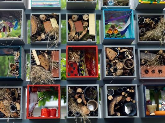 wpid8889-Colour-in-the-Garden-DESI508-nicola-stocken.jpg