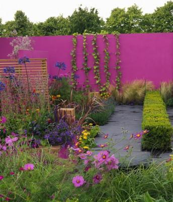 wpid8893-Colour-in-the-Garden-DESI560-nicola-stocken.jpg