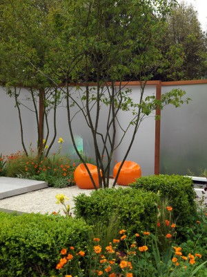 wpid8900-Colour-in-the-Garden-DESI732-nicola-stocken.jpg