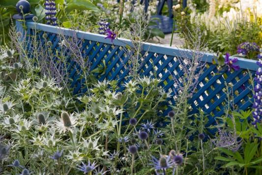 wpid8902-Colour-in-the-Garden-DESI827-nicola-stocken.jpg
