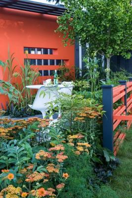 wpid8904-Colour-in-the-Garden-DESI837-nicola-stocken.jpg