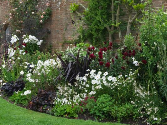 wpid8912-Colour-in-the-Garden-DHEB333-nicola-stocken.jpg