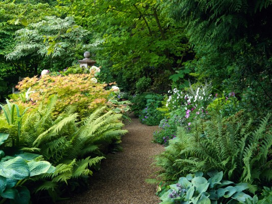 wpid8929-Colour-in-the-Garden-GBOX103-nicola-stocken.jpg