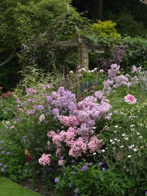 wpid8933-Colour-in-the-Garden-GBOX124-nicola-stocken.jpg