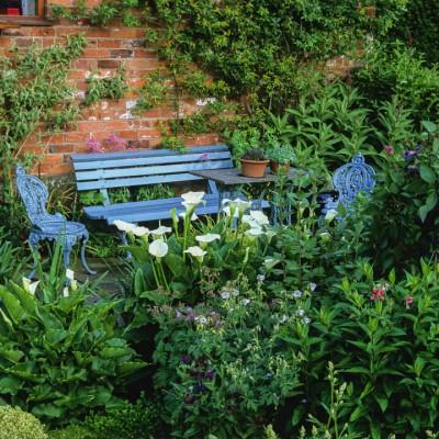 wpid8941-Colour-in-the-Garden-GDIA045-nicola-stocken.jpg