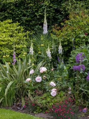 wpid8947-Colour-in-the-Garden-GHET016-nicola-stocken.jpg