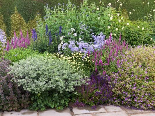 wpid8975-Colour-in-the-Garden-GTOW045-nicola-stocken.jpg