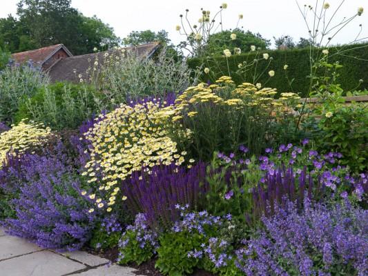 wpid8977-Colour-in-the-Garden-GTOW059-nicola-stocken.jpg