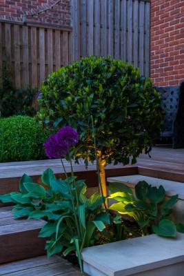 wpid9028-Garden-Lighting-GMAT024-nicola-stocken.jpg