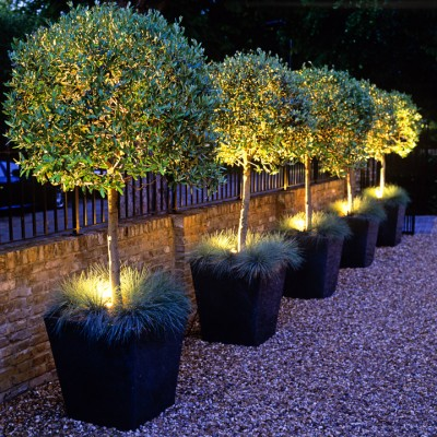 wpid9064-Garden-Lighting-GSTM015-nicola-stocken.jpg