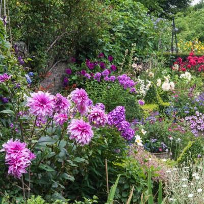 wpid9092-Cottage-Gardens-GBAN062-nicola-stocken.jpg