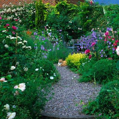 wpid9160-Cottage-Gardens-GFOU024-nicola-stocken.jpg