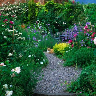 wpid9160-Cottage-Gardens-GFOU024-nicola-stocken.jpg
