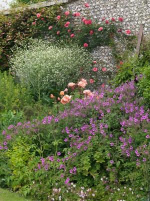 wpid9174-Cottage-Gardens-GSEL028-nicola-stocken.jpg