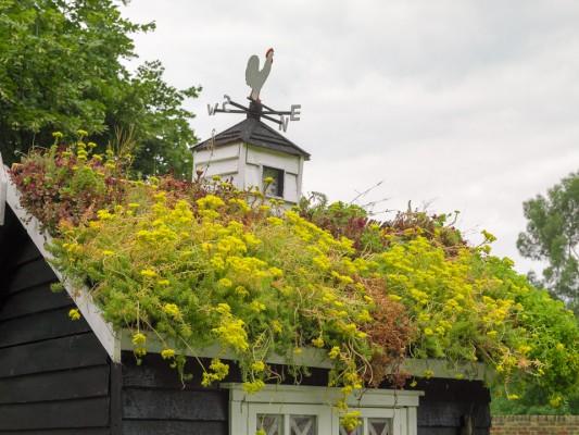 wpid9247-Garden-Buildings-DESI556-nicola-stocken.jpg