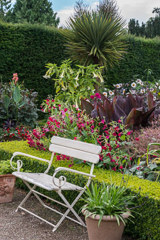 Thumbnail image for Abbeywood Gardens in August