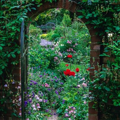 wpid10003-Garden-Rooms-with-a-View-DVIE032-nicola-stocken.jpg