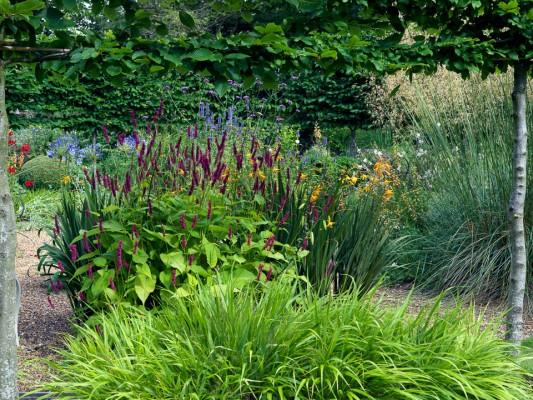 wpid10043-Garden-Rooms-with-a-View-GMOL021-nicola-stocken.jpg
