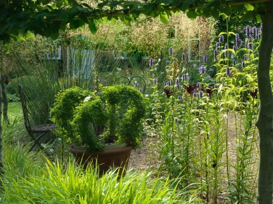 wpid10045-Garden-Rooms-with-a-View-GMOL026-nicola-stocken.jpg