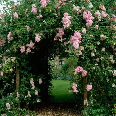 wpid10047-Garden-Rooms-with-a-View-GOLD041-nicola-stocken.jpg