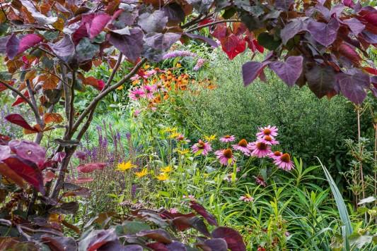 wpid10061-Garden-Rooms-with-a-View-GSMD049-nicola-stocken.jpg