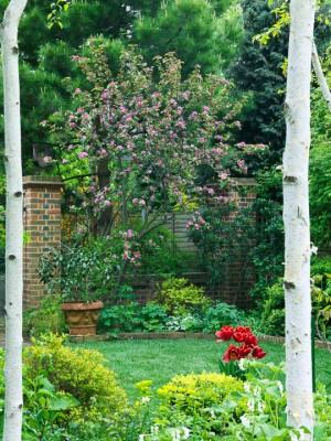 wpid10063-Garden-Rooms-with-a-View-GTHO034-nicola-stocken.jpg