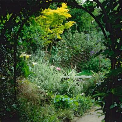 wpid10067-Garden-Rooms-with-a-View-GTUD013-nicola-stocken.jpg