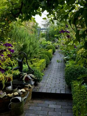 wpid10073-Garden-Rooms-with-a-View-GWET014-nicola-stocken.jpg