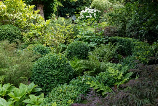wpid10235-Brooke-Cottage-in-August-GBRK032-nicola-stocken.jpg