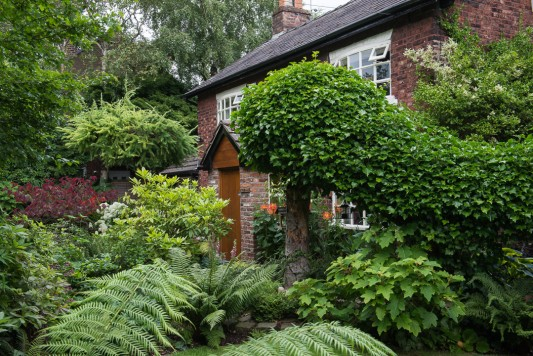wpid10237-Brooke-Cottage-in-August-GBRK034-nicola-stocken.jpg