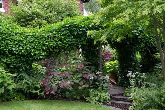 wpid10239-Brooke-Cottage-in-August-GBRK035-nicola-stocken.jpg